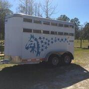 2013 Shadow Trailers 2 horse slant load bumper pull Horse Trailer