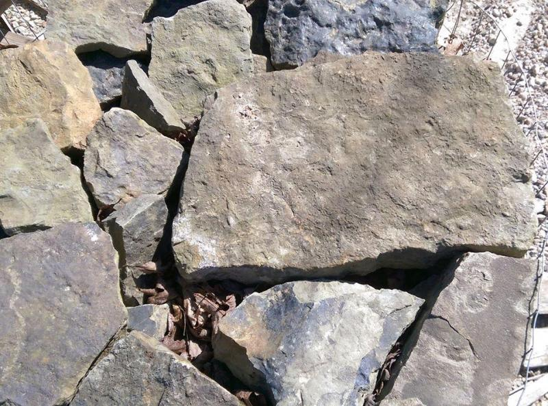 Arkanas Field Stone