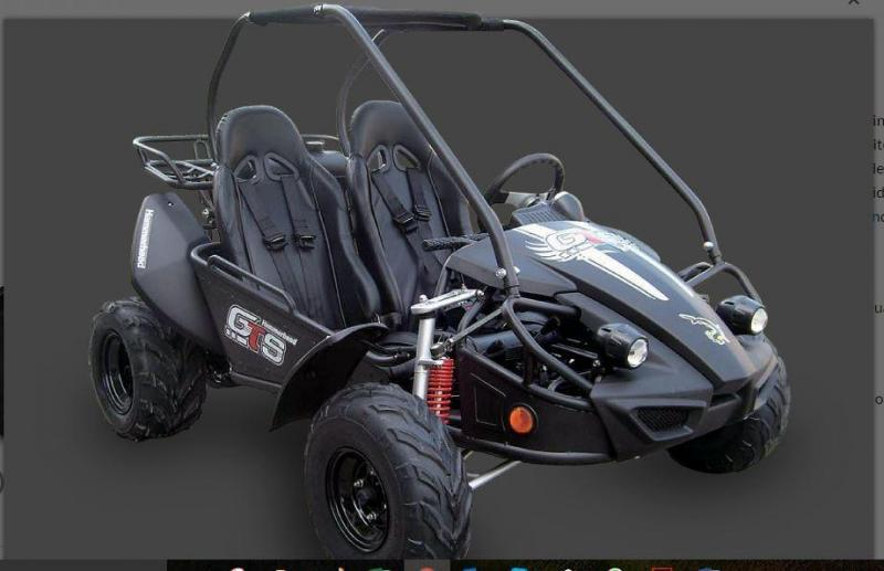 YEAR END SALE SAVE $300 GTS 150 Go Kart-by Hammerhead Offroad a Polaris Company Ends 12-31-17