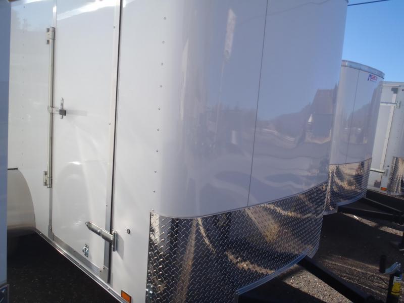 6x10 ST Enclosed Trailer Ramp Door