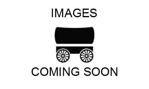 2016 Wells Cargo Fast Trac 6x10 Enclosed Cargo Trailer