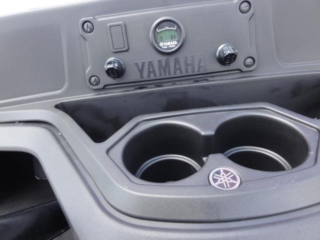 2020 Yamaha UMax Rally 2+2