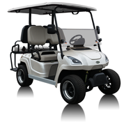2020 Star Electric Vehicle Sirius Golf Cart 4 Passenger