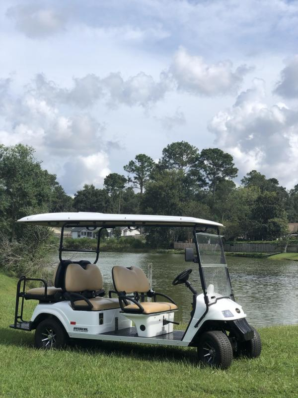 2019 StarEV Classic 48V Electric Golf Cart Street Legal 6 Passenger White