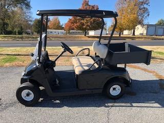2008 EZ GO Freedom RXV Golf Cart