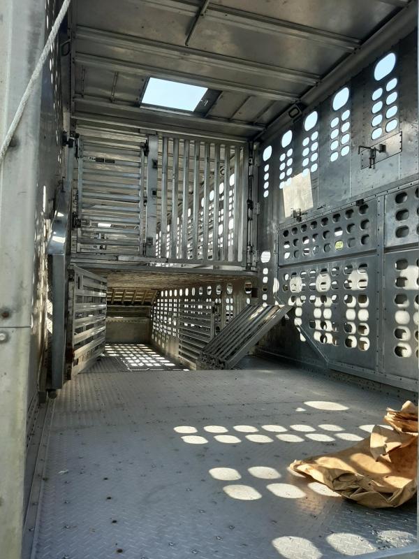 2011 Wilson Silverstar Livestock