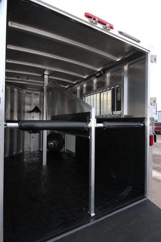 NEW 2019 Exiss Express ST 2 Horse Straight Load Trailer - Rear Ramp - All Aluminum - Removable Dividers