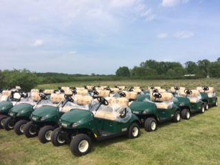 2020 E-Z-Go Fleet Carts
