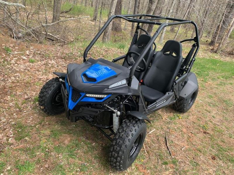 NEW BLUE Trailmaster Cheetah 150 Go Kart Teen-Adult 38 MPH SPORT UTV STYLE
