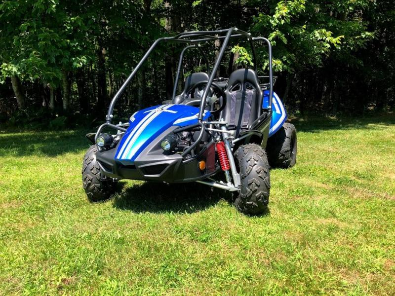 NEW Hammerhead Offroad GTS 150 Teen/Adult Go Kart BLUE