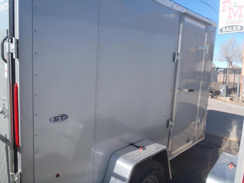 6x10 ST Enclosed Trailer Ramp Door Silver in color