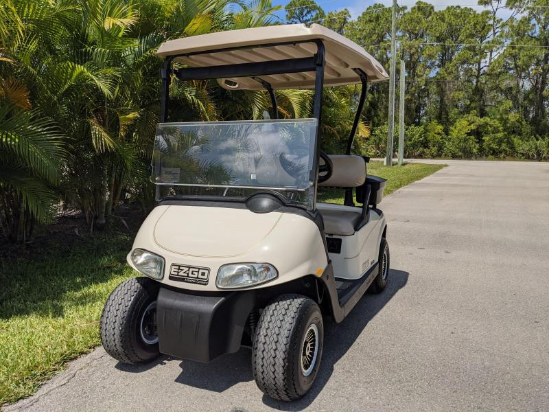 2009 E-Z-GO FREEDOM RXV Golf Cart