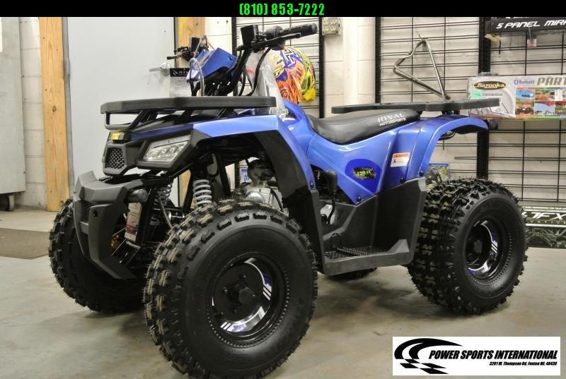 2020 MUDHAWK 10 YOUTH ATV 4-Stroke Automatic Four Wheeler BLUE #0429