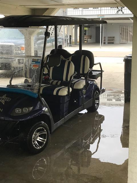 2019 ICON I60 Golf Cart